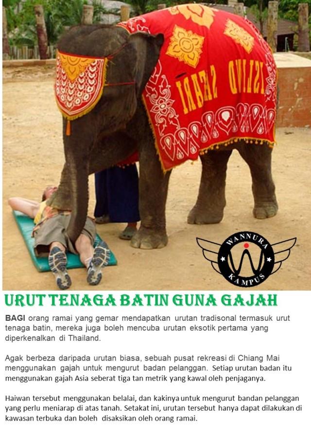 Urut tenaga batin guna gajah 2